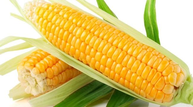 Ngô vàng là một nguồn caroten tốt, hàm lượng khoảng 0,4 mg%